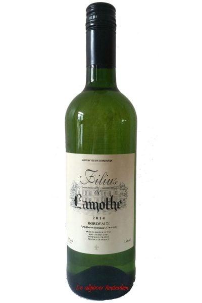Lamothe-filius-blanc