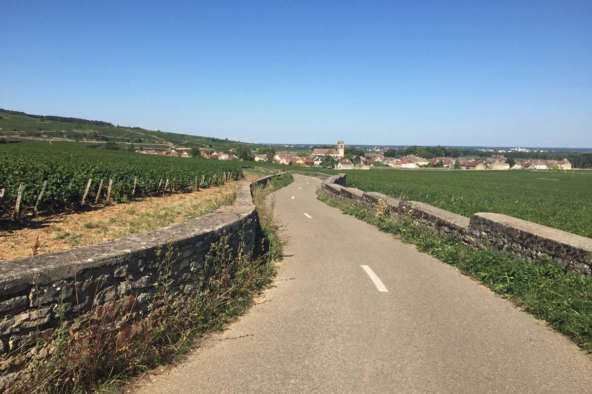 Zicht op het beroemde wijndorp Pommard
